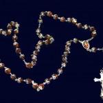 rosario 6